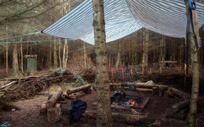 Leśna szkoła w Szkocji
